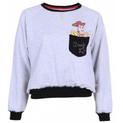 Grey Top, Blouse, Jumper, Sweatshirt For Ladies TOY STORY DISNEY PIXAR