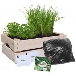 Mini ogródek Ekologiczny Pietruszka i Szczypiorek