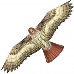 Duży latawiec X-Kites Birds of Prey Jastrząb