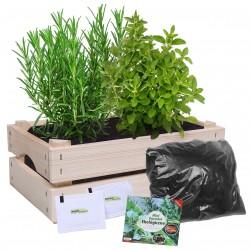 Mini ogródek Ekologiczny Oregano i Rozmaryn
