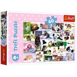 Puzzle 60 elementów-Koci świat TREFL