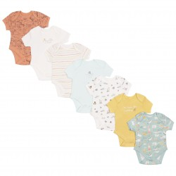 7x Short Sleeves Multicolour Body